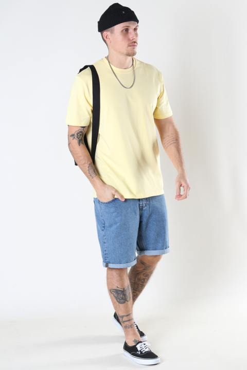 ONLY & SONS ONSANEL LIFE REG SS TEE Pale Banana