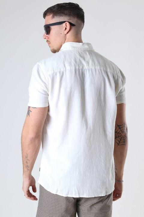 Solid SDReginald White
