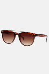 Fashion 1492 WFR Solbrille Havanna/Brown