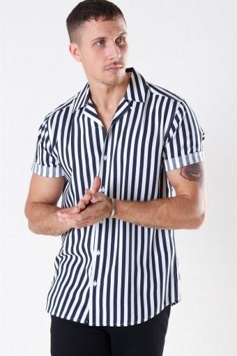 Wayne Striped Viscose Skjorte Dress Blues