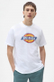 DICKIES ICON LOGO TEE WHITE